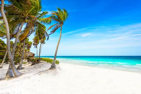 Riviera Maya - paradise beaches in Quintana Roo, Mexico - Caribbean coast 免版税图像