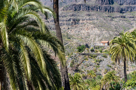 gran canaria: Small stone house in Valley Ayagaures of gran canaria, spain