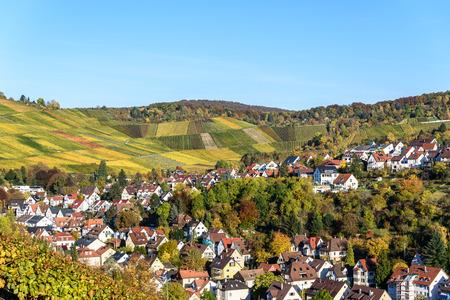 シュトゥットガルト、ネッカー渓谷 - ドイツの秋の美しい風景で Uhlbach のブドウ畑 写真素材
