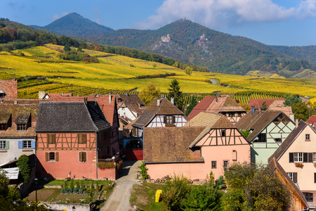 Hunawihr - small village in vineyards of alsace - france 免版税图像