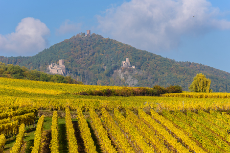 Hunawihr - small village in vineyards of alsace - france Stock Photo