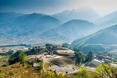 베트남, 사파 - Ricefields 스톡 콘텐츠 - 87802154