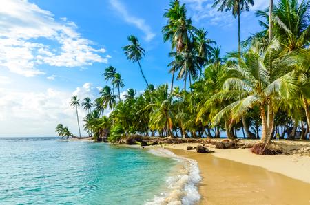 カリブ海のサンブラス島、Kuna Yala パナマで美しい孤独なビーチ。ターコイズ ブルーの熱帯の海、楽園旅行先、中央アメリカ