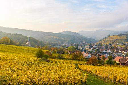 Village of Barr in Vineyard landscape in region Alsace, France