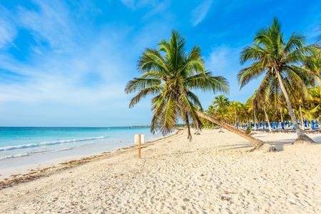 Paradise Beach also called Playa Paraiso at sunrise - beautiful and tropical caribbean coast of Tulum in Quintana Roo, Riviera Maya, Mexico Stock Photo