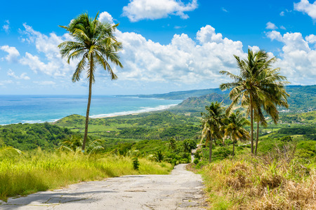 View from Cherry Tree Hill to tropical coast of  caribbean island Barbados 免版税图像