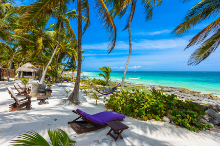 Chairs and Hammock under the palm trees on paradise beach at tropical Resort. Riviera Maya - Caribbean coast at Tulum in Quintana Roo, Mexico