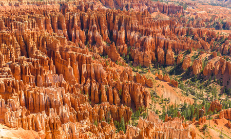 Scenic view of beautiful red rock hoodoos and the Amphitheater from Sunset Point, Bryce Canyon National Park, Utah, United States