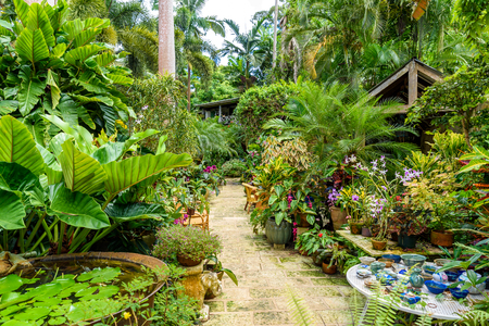 Hunte´s Botanical Garden on the Caribbean island of Barbados. It is a paradise destination with a white sand beach and turquoiuse sea. Stock Photo