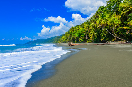 Wild beach at Corcovado Jungle in Costa Rica 스톡 콘텐츠
