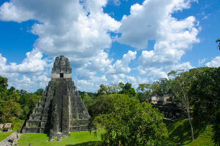 Tikal - Maya Ruins in the rainforest of Guatemala Stock Photo - 104186694