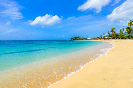 Paradise beach at Morris Bay, Tropical caribbean island Antigua