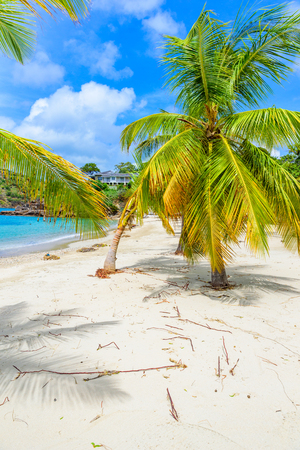 Galleon Beach on  Caribbean island Antigua, English Harbour, paradise bay at tropical island in the Caribbean Sea Archivio Fotografico
