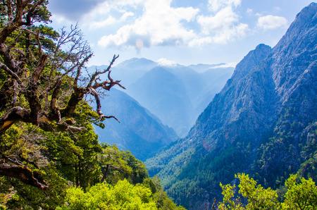 Samaria Canyon on island Crete, Greece Banco de Imagens - 111286822