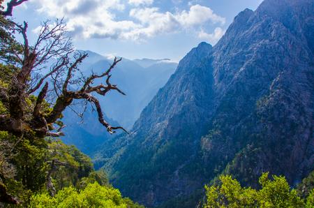 Samaria Canyon on island Crete, Greece