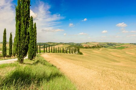 Beautiful landscape scenery of Tuscany in Italy - cypress trees along white road - aerial view -  close to Asciano, Tuscany, Italy