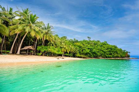 Albaguen Island (also known as Maxima and Albguan island) in Port Barton Bay with paradise white sand beaches - Tropical travel destination in Palawan, Philippines Standard-Bild
