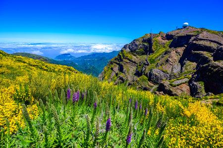 Beautiful view from Mountain