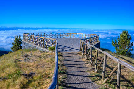 Beautiful scenery in Madeira island - beautiful flowers next to the road - Portgual