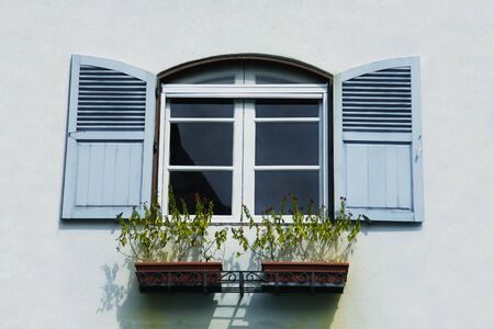 louvered: Outside View of a Louvered Window with Plants