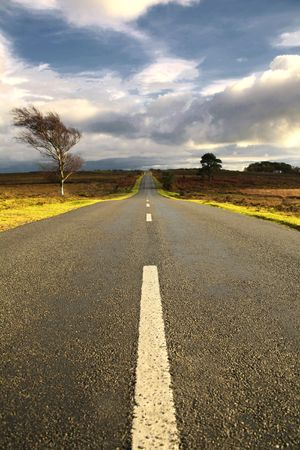 hampshire: Pintoresco paisaje ingl�s de The New Forest National Park, Hampshire
