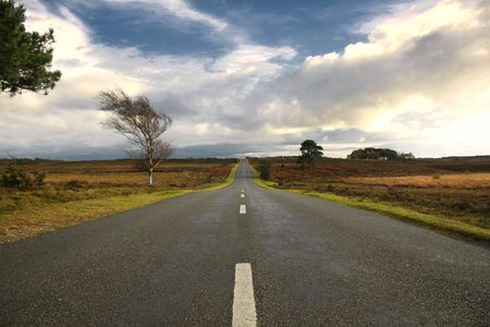 unwinding: Scenic English Landscape of The New Forest National Park, Hampshire Stock Photo