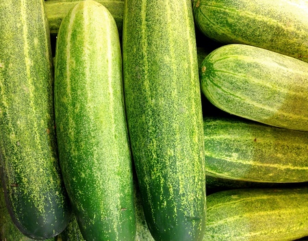 unsliced: Selection of Whole Fresh Cucumbers