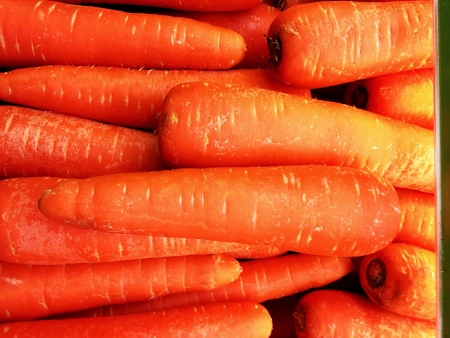 Delicious Healthy Freshly Picked Carrots