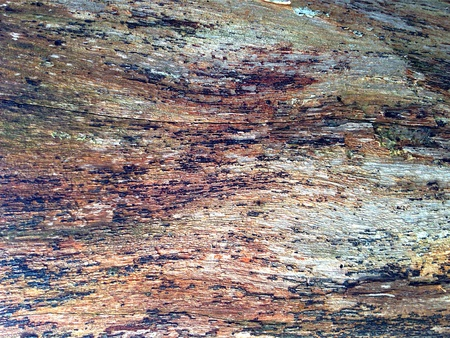 surface: Natural Rough Wood Texture Background
