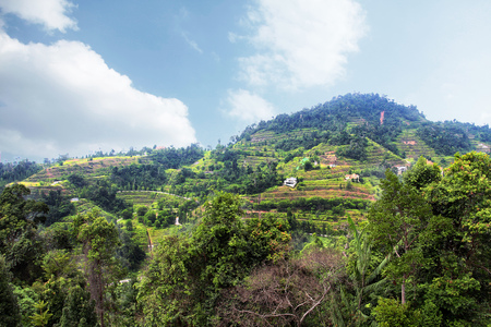Beautiful Green Mountain Landscape in Pahang, Malaysia Stock Photo