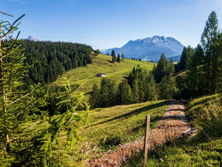Austrian Alps, mountains, vegetation, green juicy