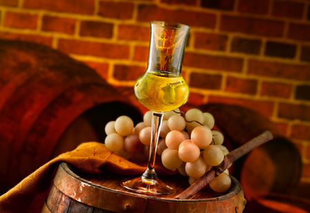 Glass of grappa tasting in the cellar