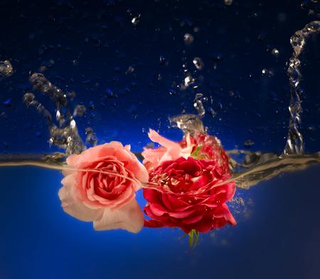 Stieg in Wasser Standard-Bild - 71462334