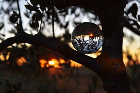 photographing through a Lensball