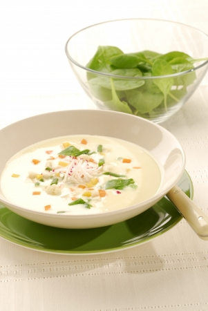 Spring vegetable soup  photo