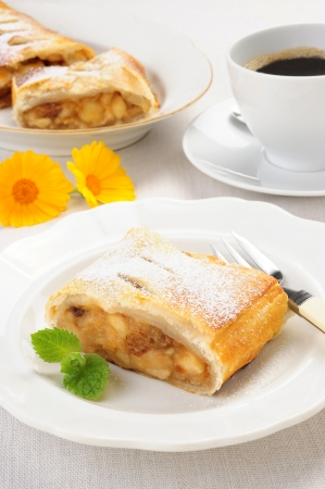 A slice of freshly baked Viennese apple strudel  photo