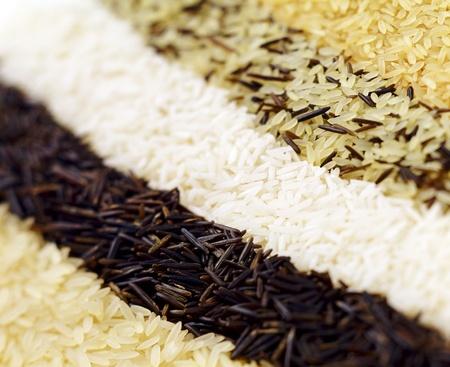 Varieties of rice arranged in rows Stock Photo