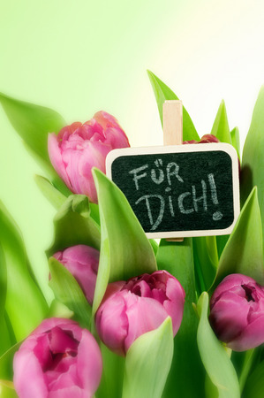 beautiful pink tulips bouquet in vase and greetings photo