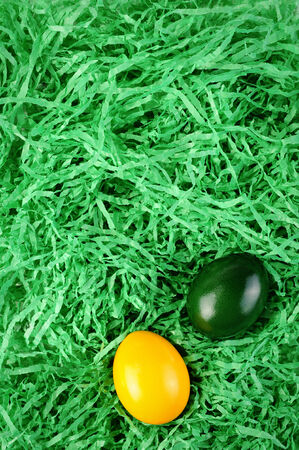 empty Easter nest with green grass