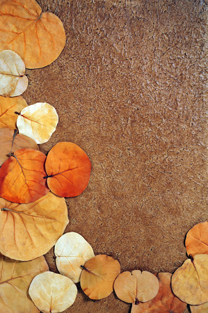 autumn leaves frame over brown textured background