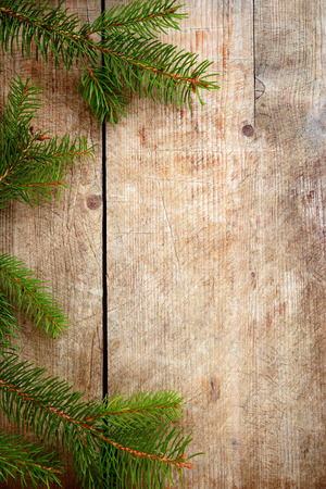 wooden background with broken-off fir tree twigs photo