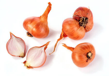 Shallot onions over white background