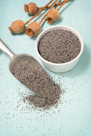 grey poppy seeds on shovel photo