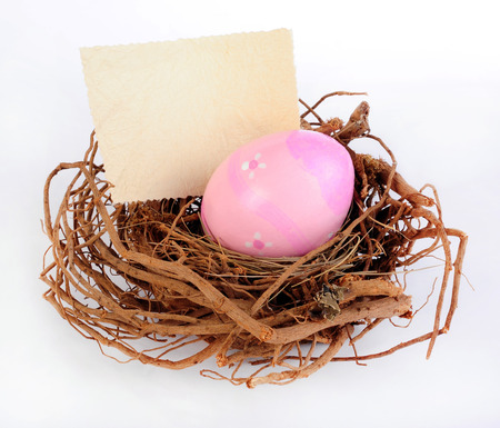 Easter nest with colored egg and label