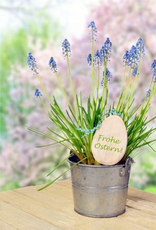 flower pot with bluebells and label Happy Easter in spring garden