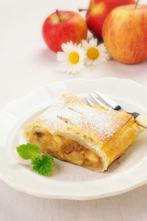 viennese: Delicious homemade Viennese apple strudel