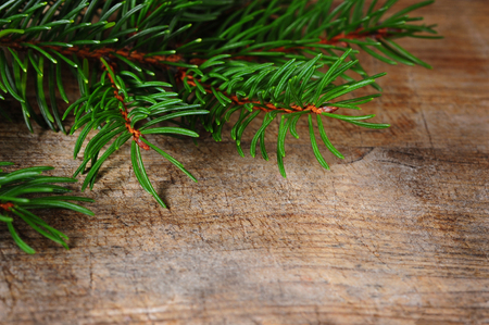 cutoff: cut-off fir tree branches over wooden texture Stock Photo