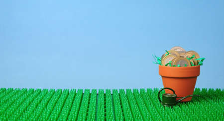 coins potted in clay pot over grass background