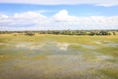 Aerial view over the Okavango Delta, Botswana. Stock Photo