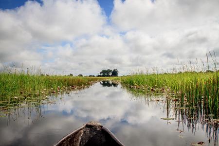 Mokoro boat trip in the Okavango Delta, Botswana.